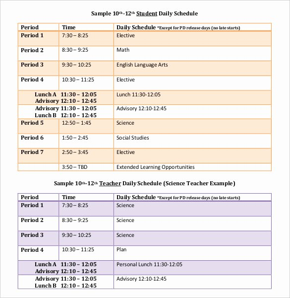 Daily Schedule Template Pdf New Daily Schedule Template 37 Free Word Excel Pdf