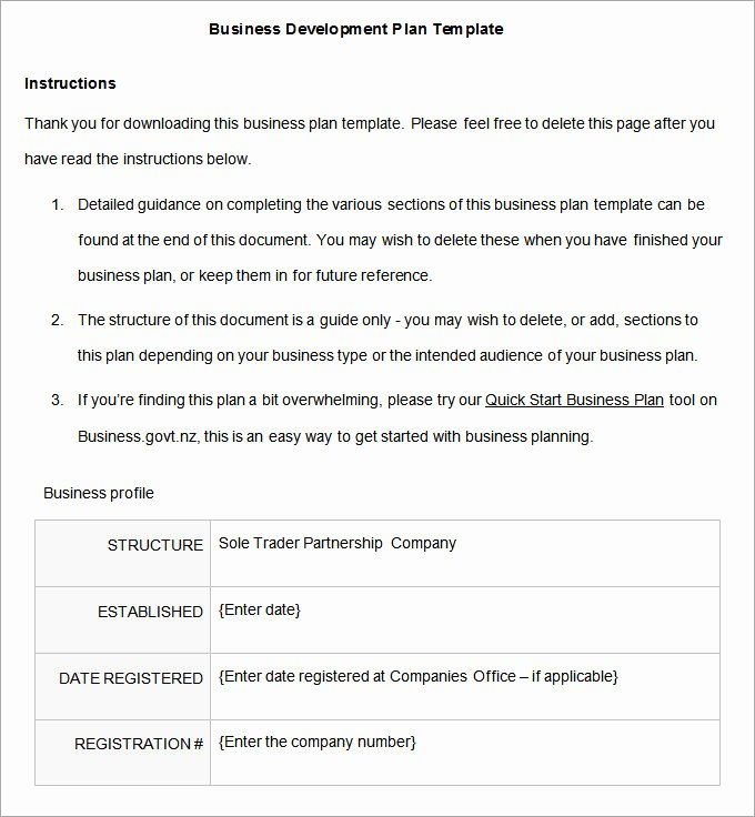 Development Plan Template Word Unique Business Development Plan 13 Free Word Documents