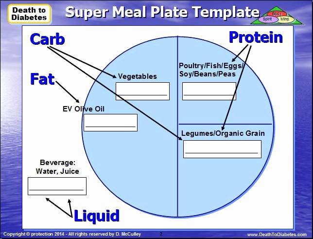 Diabetes Management Plan Template Beautiful Diet Plate Template Template Design Ideas