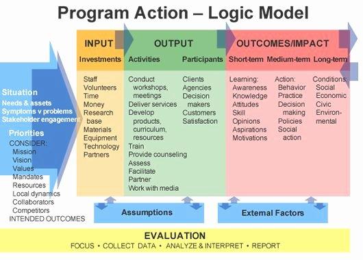 Diabetes Management Plan Template Lovely Program Logic Model Template Templates