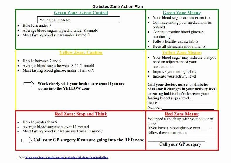 Diabetes Management Plan Template Luxury Care Plans & Action Plans
