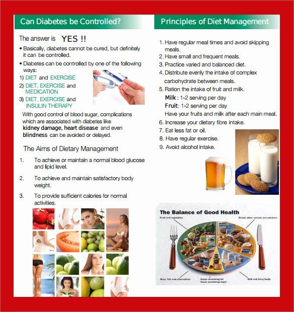 Diabetes Management Plan Template New 14 Diabetes Brochure Templates