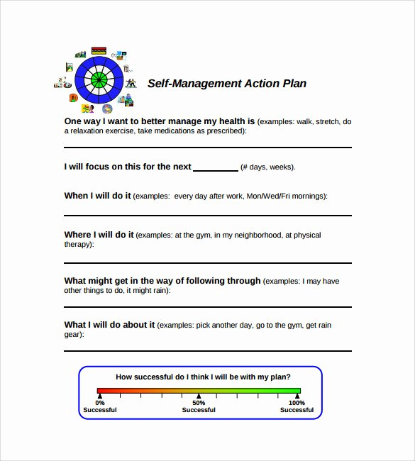 Diabetes Management Plan Template New Management Action Plan Template 9 Download Documents In