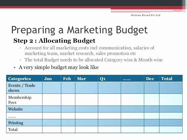 Digital Marketing Budget Template Luxury Marketing Expense Bud Template Grant Expense Tracking