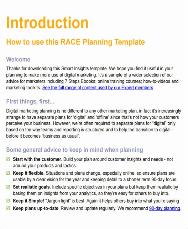 Digital Marketing Campaign Template Awesome 12 Sample Digital Marketing Plan