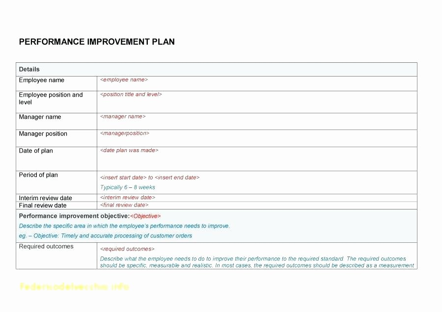 Documenting Employee Performance Template Lovely Employee Termination Documentation Documenting Performance