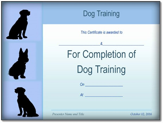 Dog Training Certificate Template Best Of Basic Dog Training Certificate Template Ppt Pdf formats