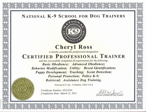 Dog Training Certificate Template Inspirational About Us