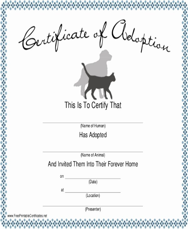 Dog Training Certificate Template Inspirational Dog Certificate Template 9 Free Pdf Documents Download