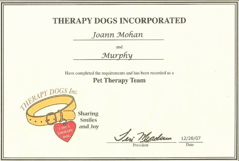 Dog Training Certificate Template Lovely 24 Of Service Animal Certificate Template