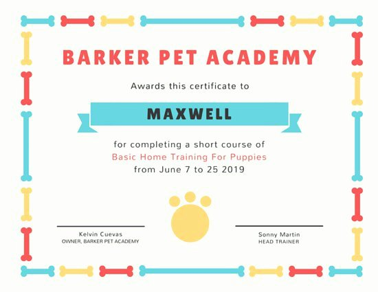 Dog Training Certificate Template Lovely Customize 1 968 Certificate Templates Online Canva