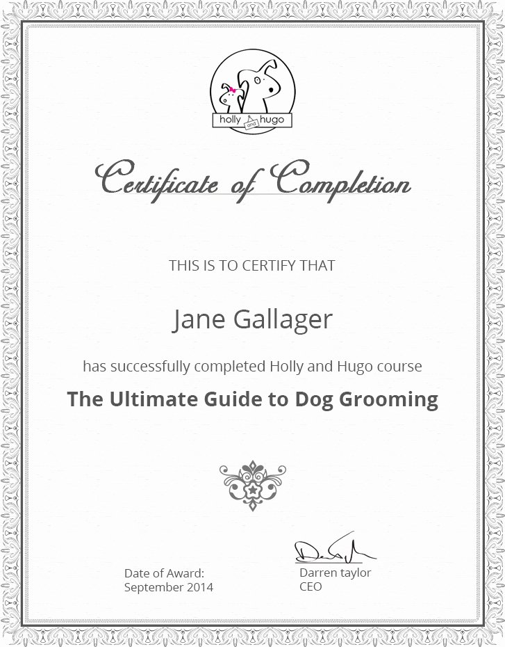 Dog Training Certificate Template Lovely Dog Grooming Course Certificate
