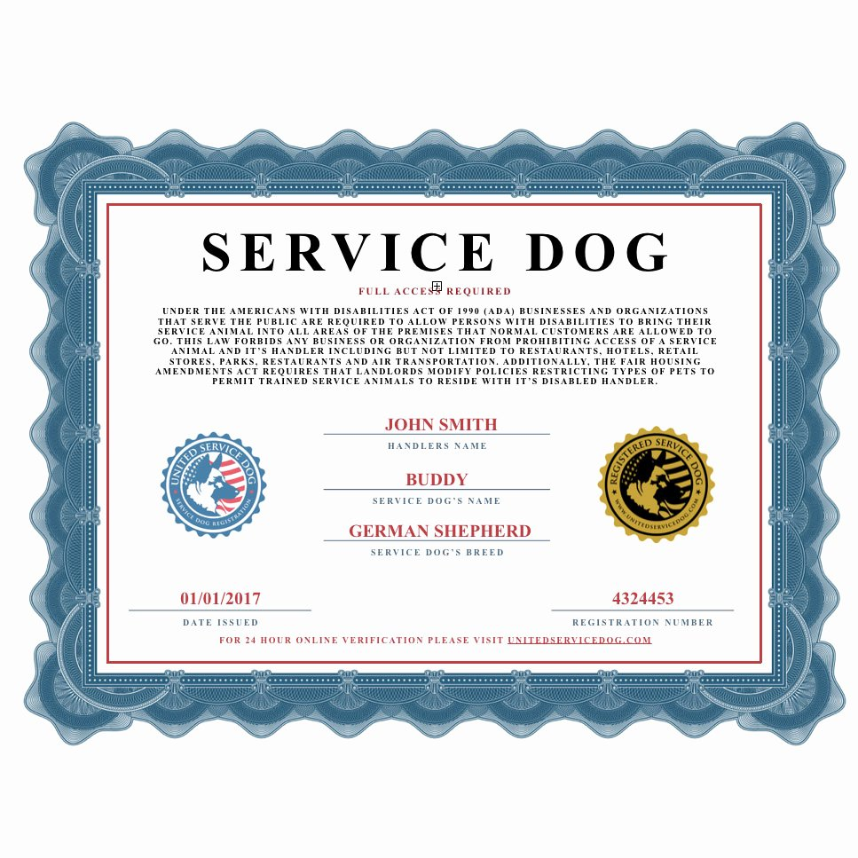 Dog Training Certificate Template Unique Service Dog Certificate