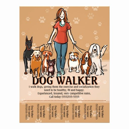 Dog Walking Flyer Template Fresh Dog Walker Dog Walking Advertising Template Flyer