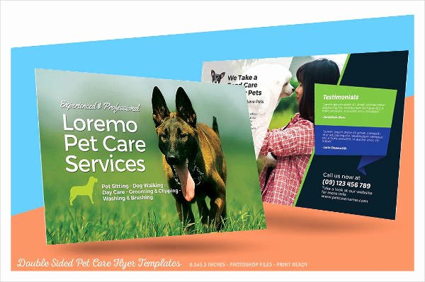 Dog Walking Flyer Template Inspirational 15 Dog Walking Flyer Templates Psd Vector Eps Ai