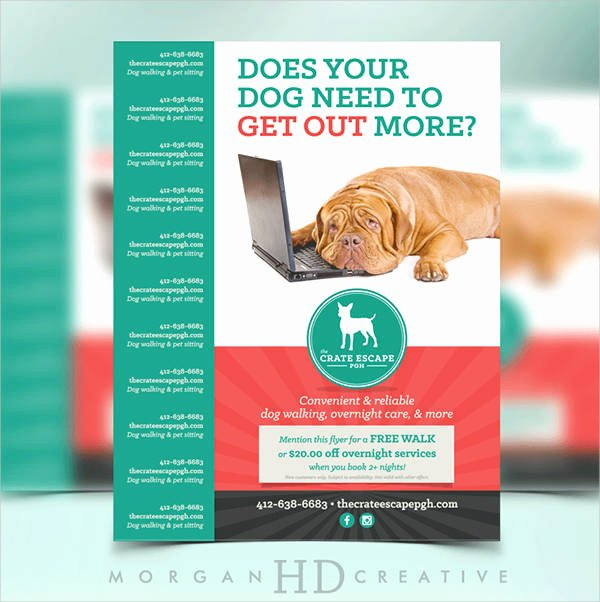 Dog Walking Flyer Template Luxury 15 Dog Walking Flyer Templates Psd Vector Eps Ai