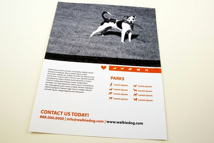 Dog Walking Flyer Template Luxury Dog Walking Service Flyer Template