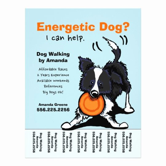 Dog Walking Flyer Template New Dog Walker Walking Personalized Tear Sheet