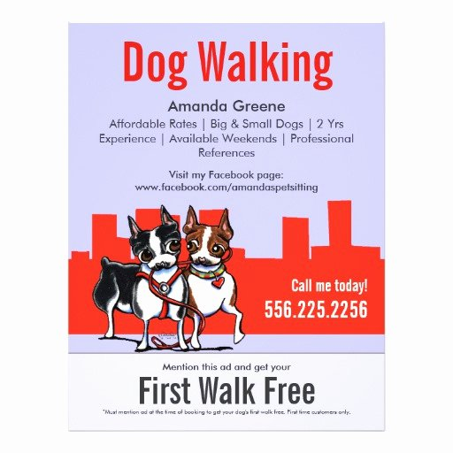 Dog Walking Flyer Template New Dog Walking Walker Boston Terriers Coupon Ad Flyers