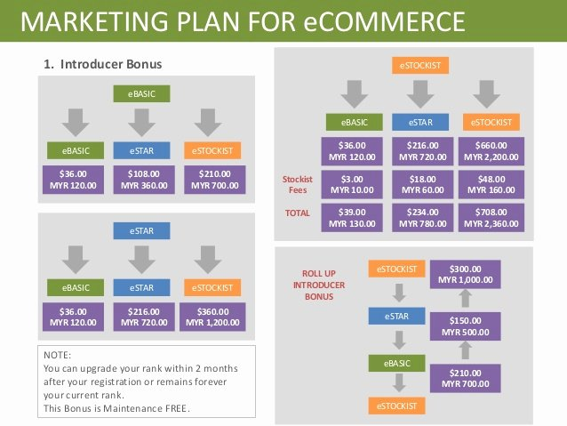 Ecommerce Marketing Plan Template Lovely Line Web Marketing Ltd Simple Video Editor for Mac