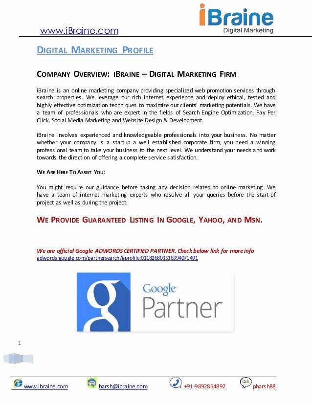 Ecommerce Marketing Plan Template Luxury Digital Marketing Proposal