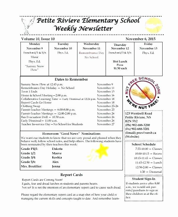 Elementary Classroom Newsletter Template Best Of Elementary School Newsletters Unique Newsletter