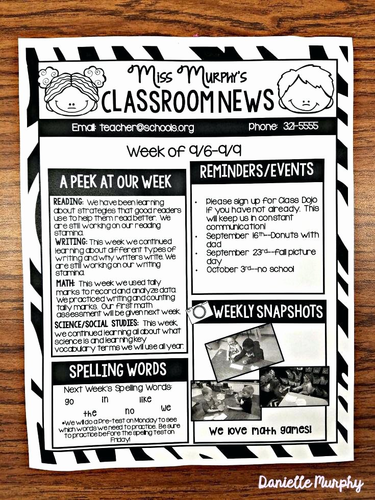Elementary Classroom Newsletter Template Lovely Editable Newsletter Templates School and Teacher Free Math