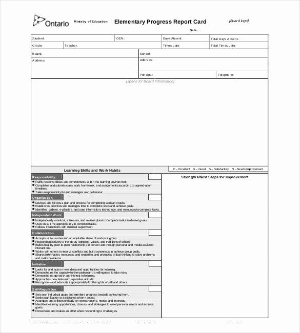 Elementary Progress Report Template Inspirational Progress Report Templates 23 Free Word Pdf Google