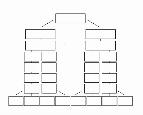 Emergency Phone Tree Template Elegant Printable Phone Tree Template – 15 Free Word Excel Pdf
