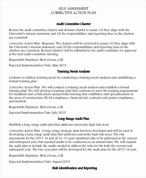 Employee Corrective Action Plan Template Awesome Corrective Action Plan Template 16 Free Sample Example