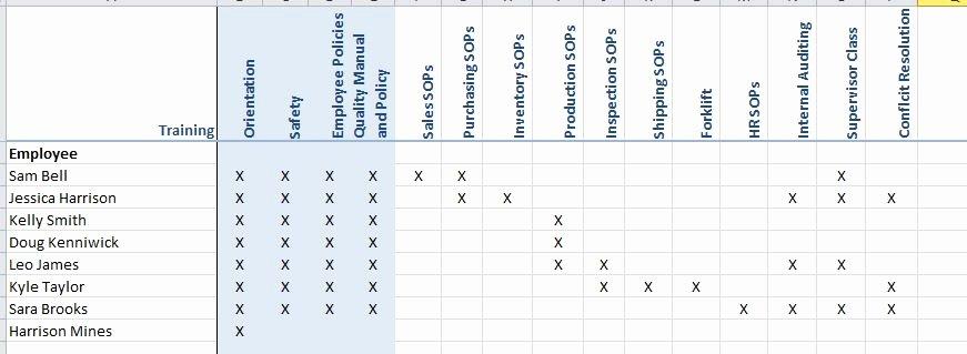 Employee Cross Training Template Unique Training Matrix Magpie Consulting Llc