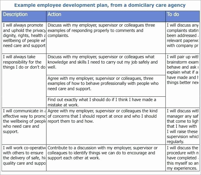 Employee Development Plan Template Awesome Template Employee Development Plan Free Templates for Word