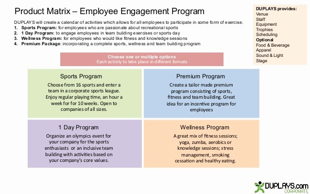 Employee Engagement Plan Template Elegant Employee Engagement Program