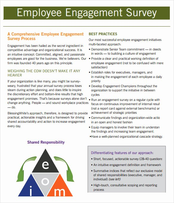 Employee Engagement Plan Template Luxury Employment Engagement Survey 7 Download Documents In