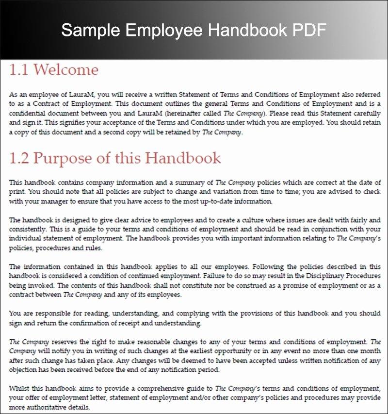 Employee Handbook Design Template Inspirational Employee Handbook Template Beepmunk