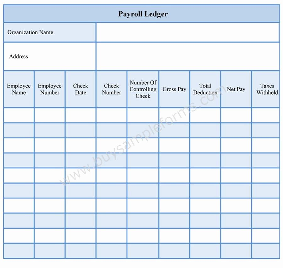 Employee Payroll Ledger Template Lovely Payroll Ledger form