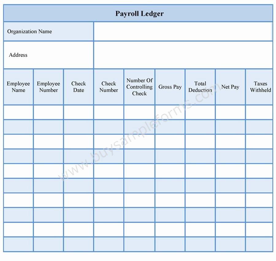 Employee Payroll Ledger Template Lovely Payroll Ledger form