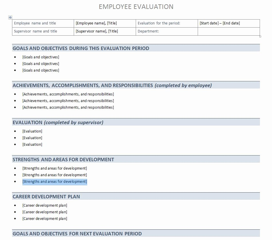 Employee Performance Appraisal form Template New Performance Evaluation Template