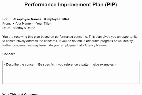 Employee Performance Improvement Plan Template Lovely Performance Improvement Plan Pip Template for Agencies