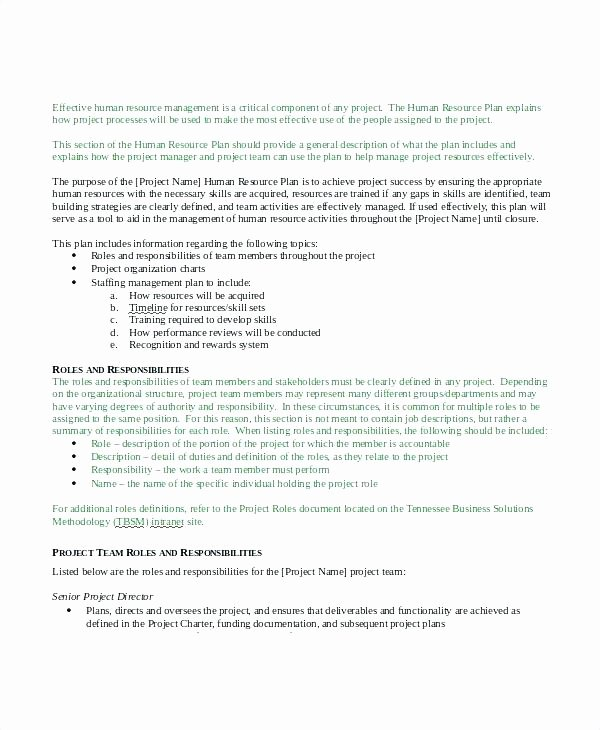 Employee Recognition Program Template Best Of Employee Recognition Plan Template Employee Recognition