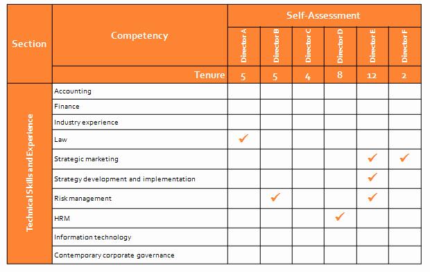 Employee Skills assessment Template Best Of Director Skills Petency assessment Effective Governance