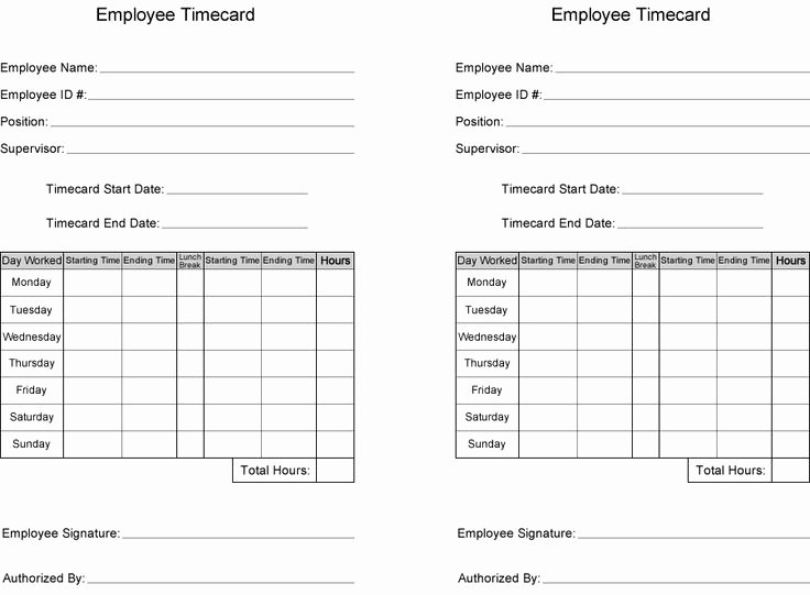 Employee Time Card Template Fresh Free Time Card Template