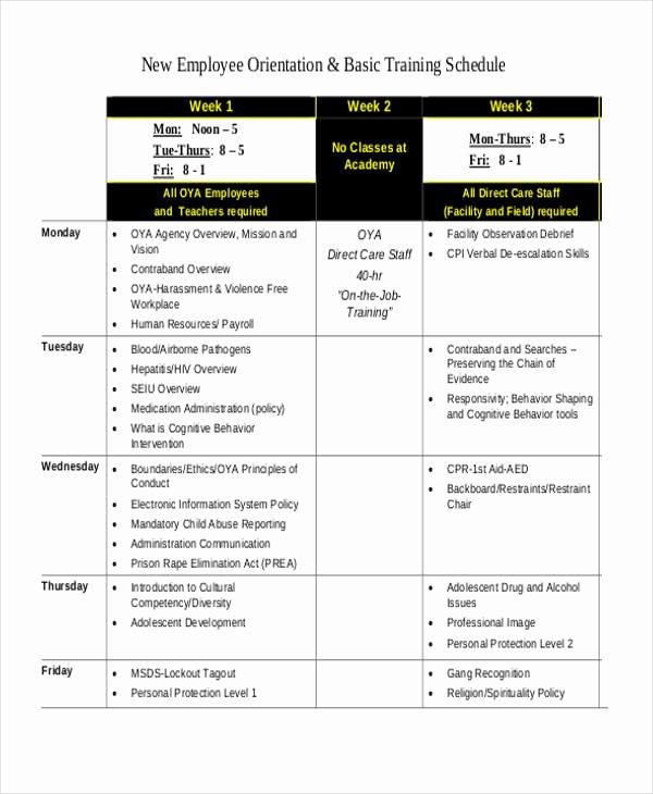 Employee Training Schedule Template Elegant 13 Employee Training Schedule Template Free Sample