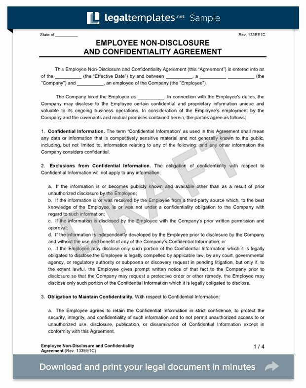 Employment Confidentiality Agreement Template Best Of Employee Non Disclosure Agreement Create An Nda
