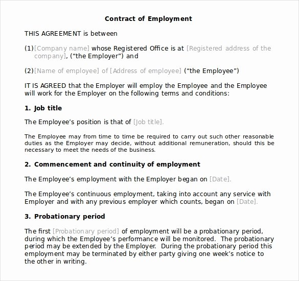 Employment Contract Template Word Fresh 10 Microsoft Word Contract Templates Free Download