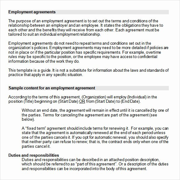 Employment Contract Template Word Luxury Employment Agreement 8 Free Samples Examples format
