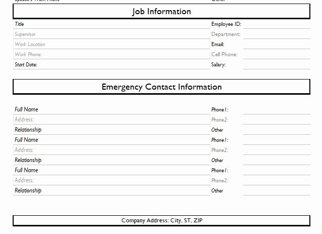 Employment Information form Template Best Of Record Of Employee Information form format Word and Excel