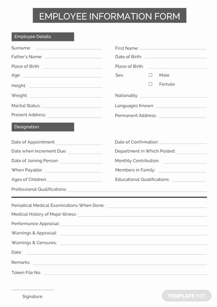 Employment Information form Template Elegant Employee Information form Template Download 239 Sheets