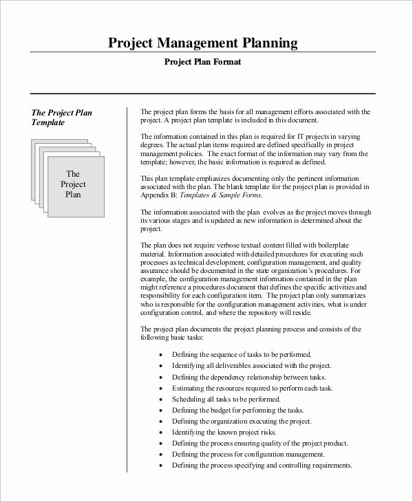 Example Of Project Plan Template Elegant Sample Project Management Plan 13 Examples In Word Pdf