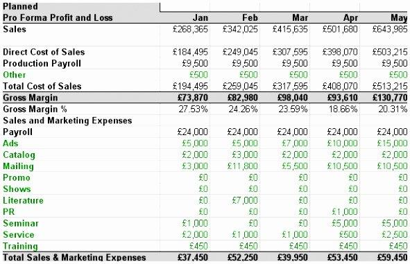 Excel P&l Template Lovely 12 Business P&l Template Twtet